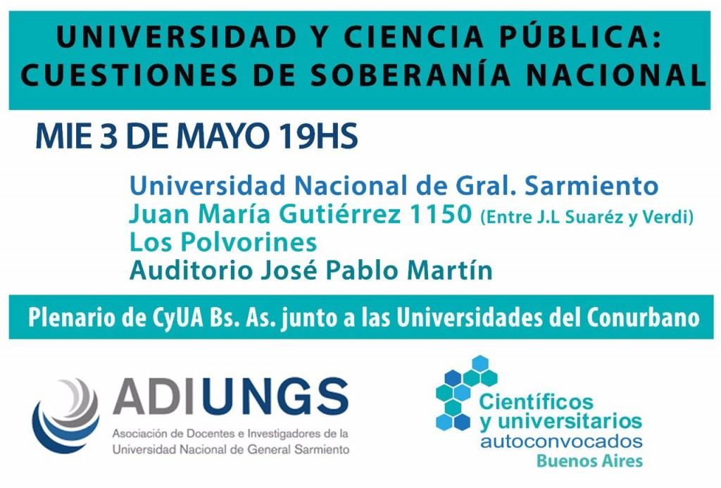 debate plenario CyUA